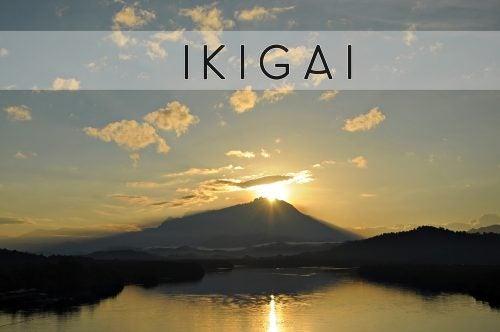 Ikigai – japanilainen käsitys elämän tarkoituksesta