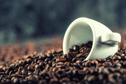 kahvipapuja ja kuppi
