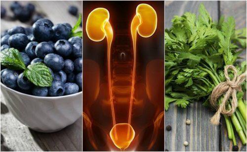 7 munuaisia ja virtsarakkoa suojaavaa ruokaa