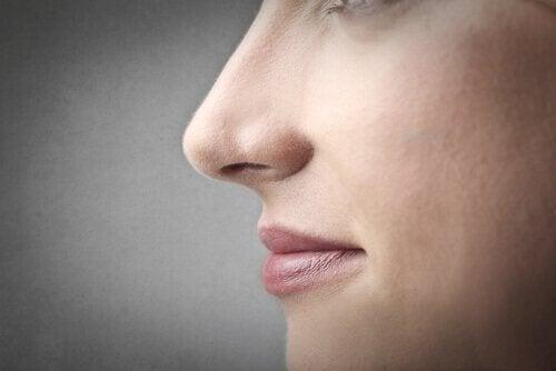 nenän puhdistaminen