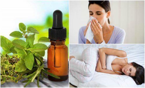 8 tapaa käyttää oreganoöljyä terveydenhoidossa