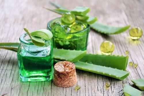 ruokaa vatsahaavojen hoitoon: aloe vera