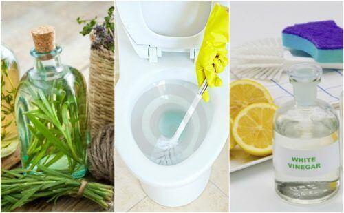 5 ekologista ratkaisua kylpyhuoneen desinfiointiin