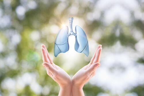 terveet keuhkot