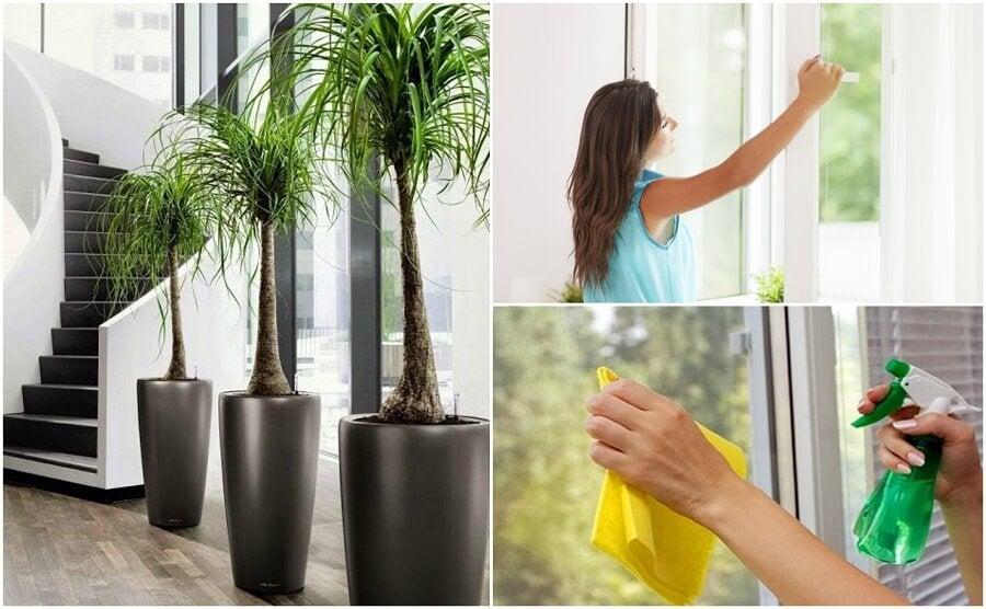 6 asiaa, jotka voit tehdä parantaaksesi kotisi ilmanlaatua