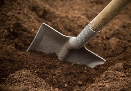 maaperä
