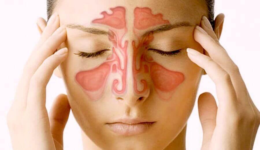 Nenän sivuontelot: 5 mielenkiintoista faktaa
