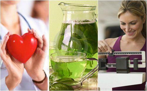 6 hyvää syytä juoda vihreää teetä