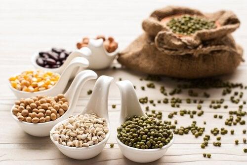 terveelliset ruoat: palkokasvit