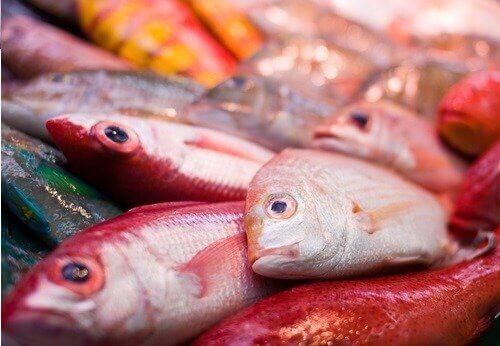 Kalan elohopea on yhdistetty autismiin