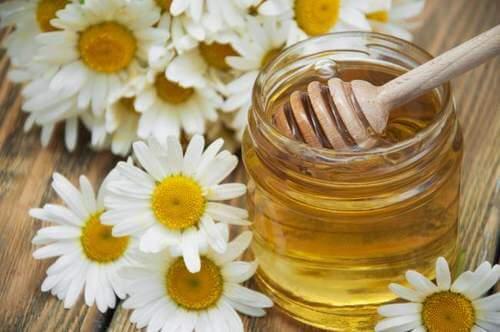 koita luontaishoitoa migreeniin kamomillasta ja hunajasta