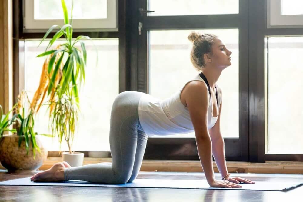 Jooga auttaa selkäkipuun