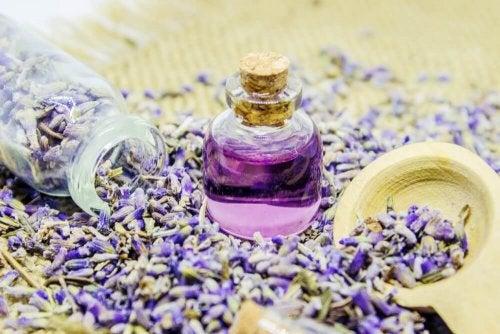 laventelista voi valmistaa oman ilmanraikastimen