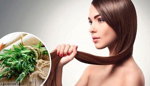 Yrttejä ja mausteita hiusten kasvun edistämiseksi