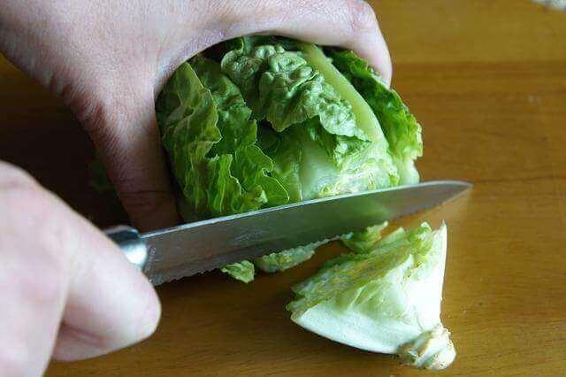 Salaatinlehden pilkkominen
