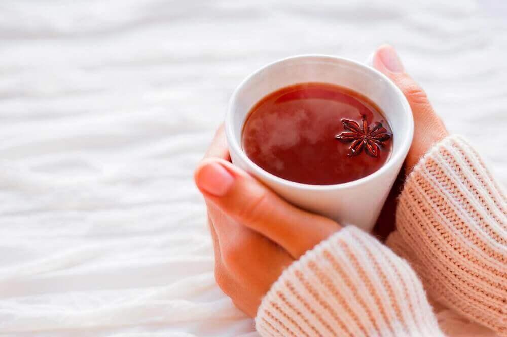 Anistee on yksi tehokkaimmista luontaishoidoista ruoansulatusvaivoihin