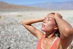 auringonpistos ja nestehukka