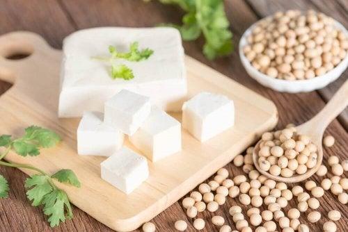 Tofu proteiinin lähteenä