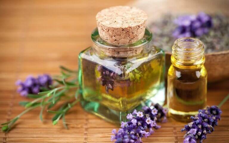 hoida kirpun puremat laventeliöljyllä