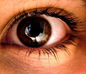 silmä läheltä