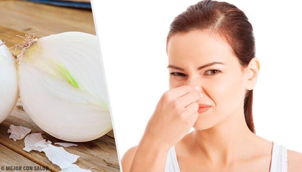 8 ruokaa, jotka aiheuttavat pahaa hajua kehossa