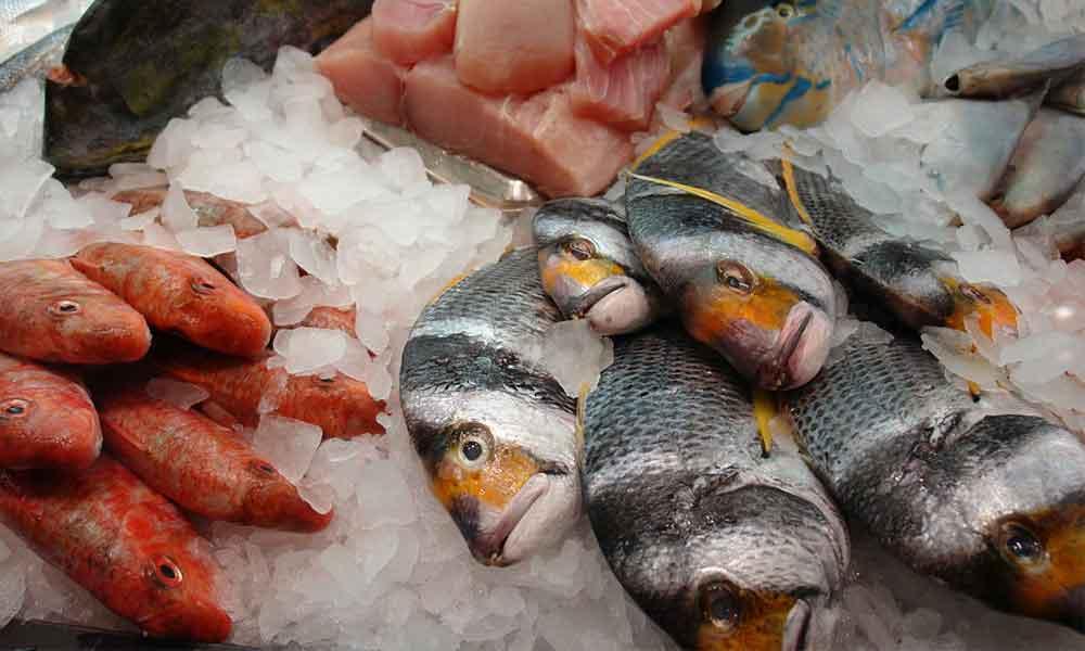 Pilaantuneen kalan tunnistaa hajusta ja ulkonäöstä