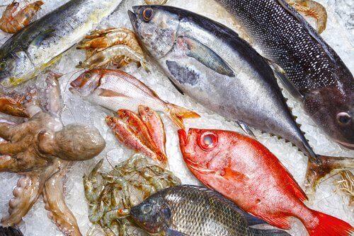Oikea säilytys takaa kalan tuoreuden