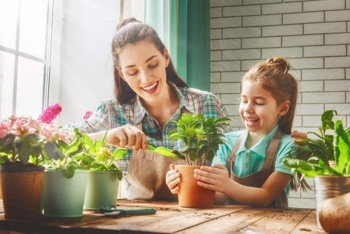 Kasvit auttavat hapen tuotannon lisäksi eliminoimaan sisäilmasta terveydelle haitallisia kemikaaleja