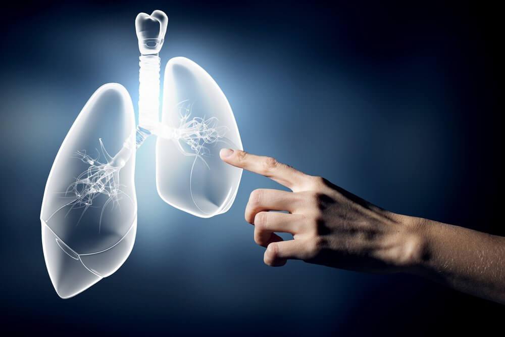 keuhkot