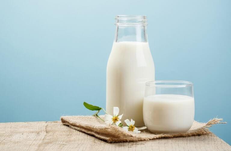 Ripulin aikana kannattaa välttää maitotuotteita