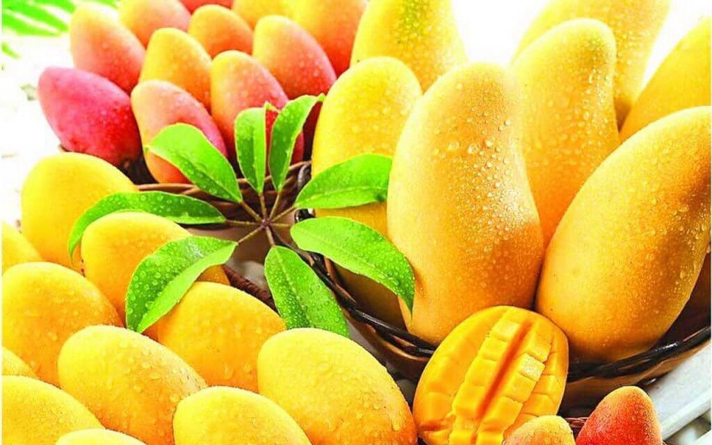 Mangojen E-vitamiini estää veren hyytymistä