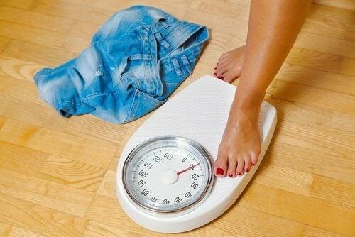 lihansyönnin lopettaminen aiheuttaa painon laskua
