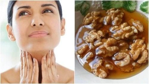 Hunaja-pähkinähoito kilpirauhasen terveydelle