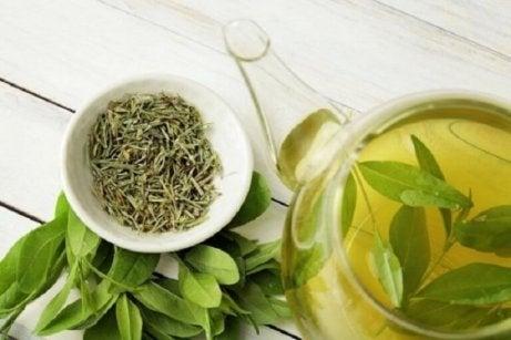 Vihreä tee hoitaa herkkää päänahkaa