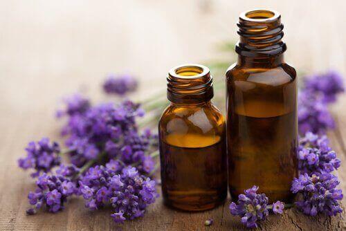 Laventelin eteerinen öljy voi lievittää migreeniä
