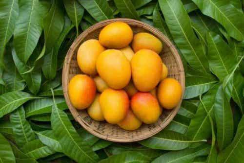 Näin käytät mangoa ummetuksen hoitoon