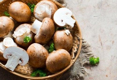 Sienet sopivat monipuolisuutensa vuoksi moniin eri resepteihin
