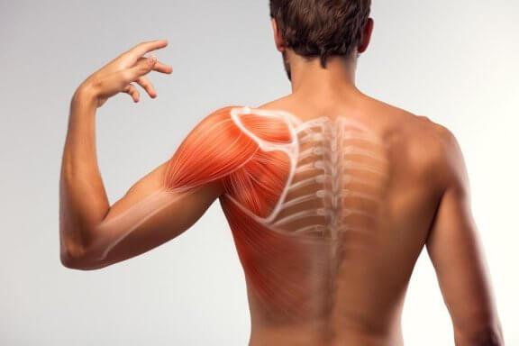 7 kotihoitoa lihaskouristuksen vähentämiseksi