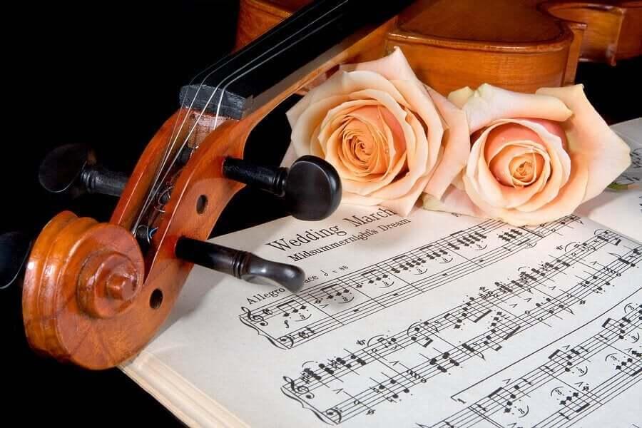 hääkappaleita viululla