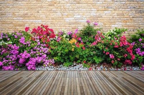 Puutarhan koristeleminen kukilla tuo ilmapiiriin sekä rentouttavaa, että samalla rauhoittavaa tunnelmaa