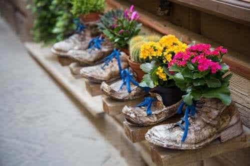 6 yllättävää tapaa vanhojen kenkien uusiokäyttöön