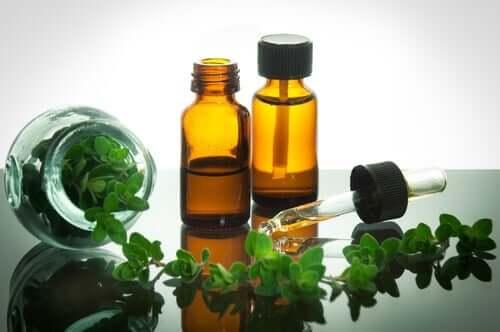 Oreganoa on käytetty jo vuosisatojen ajan luonnon antibioottina ja ruoansulatuksen tehostajana