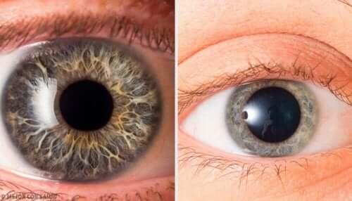 kun joku valehtelee sinulle, hänen pupillinsa muuttuvat