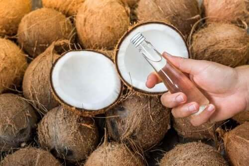 kokosvesi