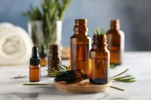 Rosmariinin hyödyt ja käyttötavat