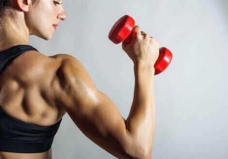 naisen lihakset