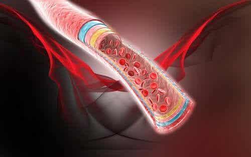 Verenkierron vilkastaminen neljällä luontaishoidolla