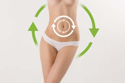 Hidas aineenvaihdunta polttaa vähemmän kaloreita, mikä taas johtaa usein painonnousuun