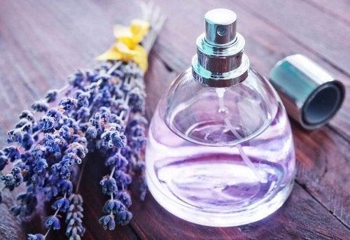 Laventelin miellyttävä tuoksu sopii loistavaksi lisäksi kodin puhdistusaineisiin