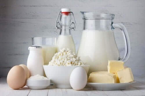 Maitotuotteet ovat hyvä proteiininlähde